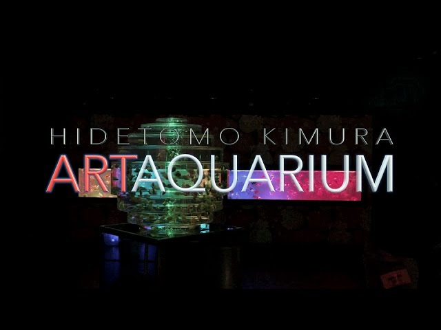 Art Aquarium 2015 [Milano, Italia] Documentario