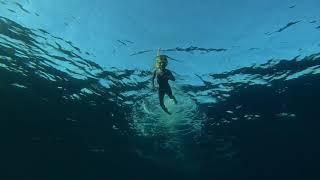 Первый заплыв Назарчика в Красном море Египет Nubian island