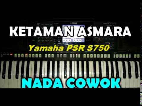 Didi Kempot Ketaman Asmara Lyric By Saka