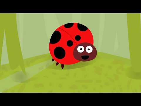 Мультфильм веселые насекомые