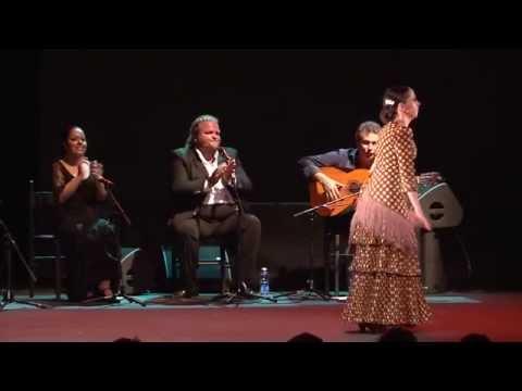 2e journée du festival Arte Flamenco