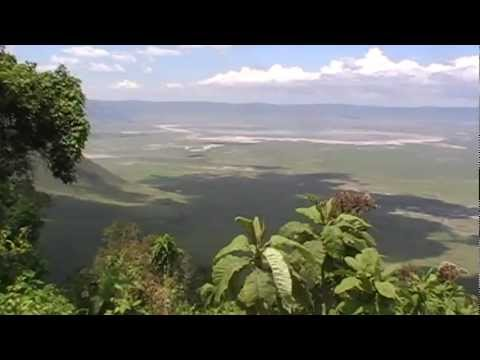 The Ngorongoro Crater in Tanzania: Views and the animals