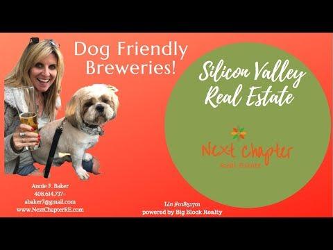 Dog Friendly Breweries.  Dog Friendly Beer Tasting