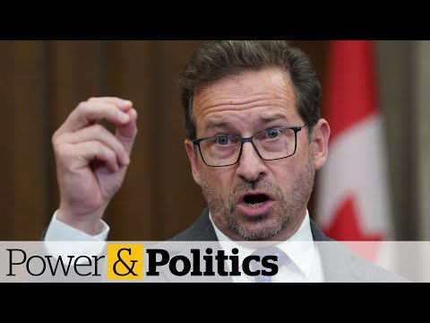 Federal funding for Bill 21 legal challenge angers Bloc Québécois | Power & Politics