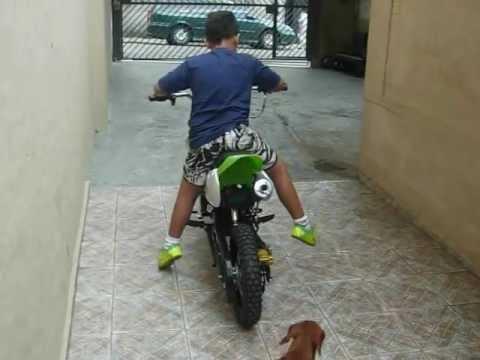 mini moto falcon betta
