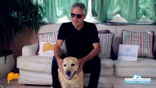 Carne di cane. On. Brambilla diffonde il video-appello di Bocelli