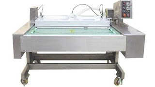 Continuous Vacuum Packager Machine Tabletop Vacuum Packing Equipment