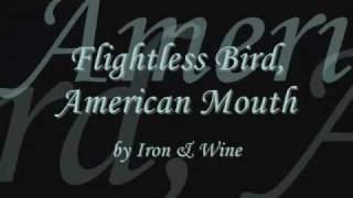 Flightless Bird, American Mouth (Twilight) + lyrics