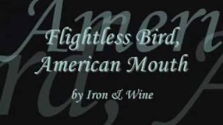 Flightless Bird, American Mouth (Twilight) + lyrics