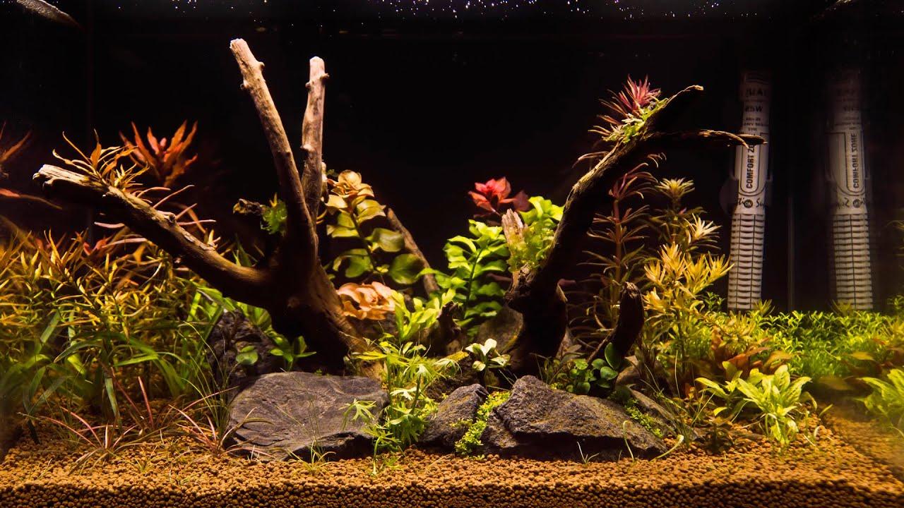 Aquarium AZOO Plant Grower Bed
