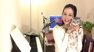 今週のピアノ弾き語りカバー   「卒業(菊池桃子)」 卒業シーズンなの...