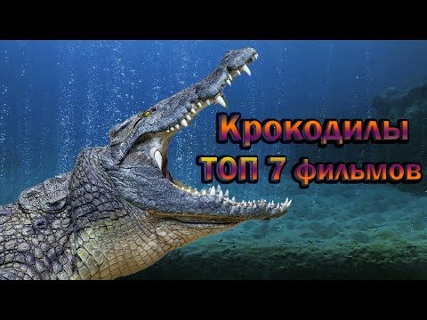 Крокодилы ТОП 7 лучших фильмов