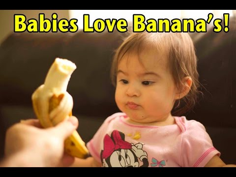 How To Feed Your Baby a BANANA (8 month old Toddler)