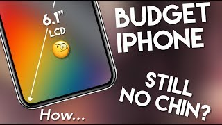Budget LCD 6.1