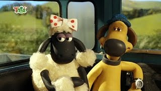 Shaun The Sheep Full Episodes Season 4 New Compilation Part 7  Funny Cartoons