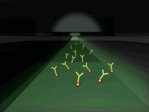 Fiber-Optic Nano-Biosensor