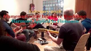 Malaga Workshop 2018 /Intensive course on harmony for modern flamenco guitarrists / Spain R.Diaz