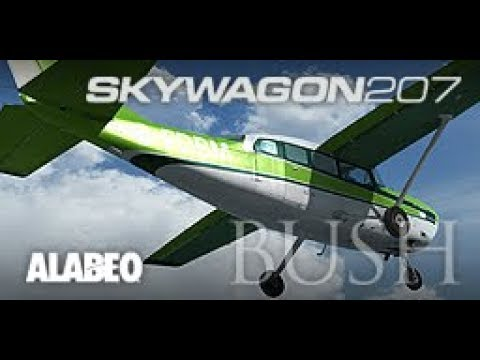 alabeo cessna c207 skywagon