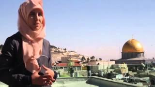 القدس - زينة قطميرة.. رحلة مع التصوير في ساحات المسجد الأقصى