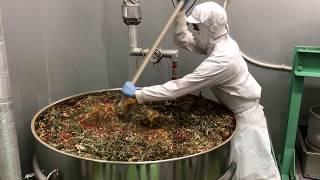 野草酵素の発酵風景2