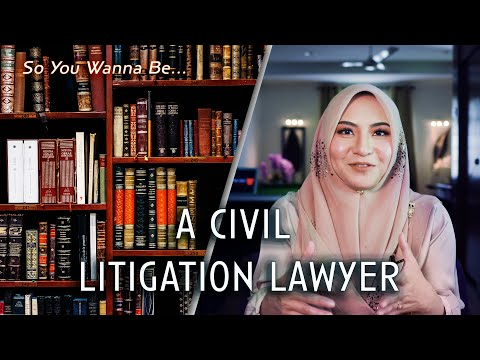 So You Wanna Be... A Civil Litigation Lawyer?