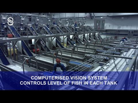 Eskja - Complete Automatic Pelagic Processing Plant (Full Video)