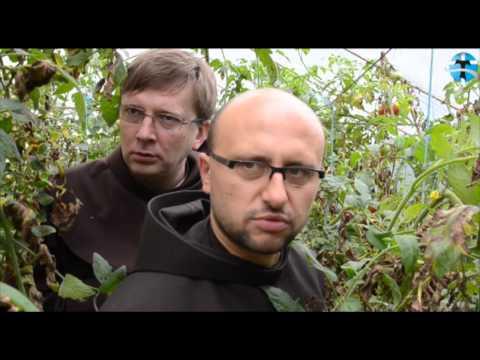 bEZ sLOGANU2 (178) rzucić klatwe - franciszkanie