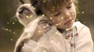 Проект кошка О любви и сострадании