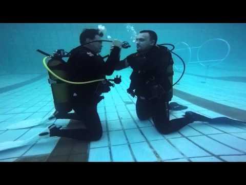 Divemaster Stress Test 2015