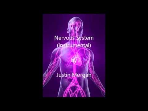 Nervous System (instrumental)