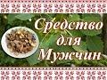 Простой Рецепт для Профилактики ПРОСТАТИТА Кора Осины Спирт 70 mp3