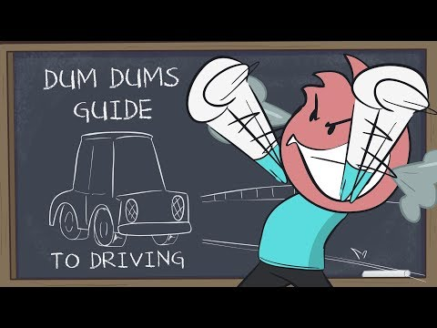 Dum Dums Guide To Driving