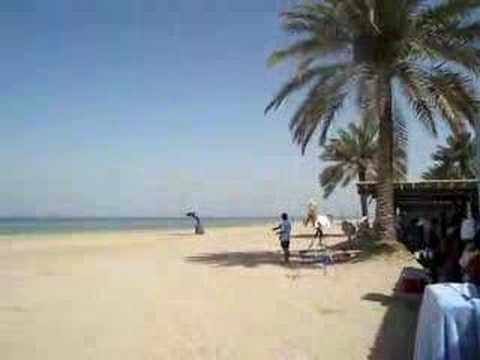 aramco beach trip | FunnyCat TV