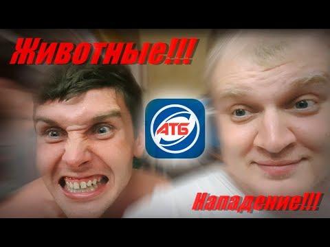 VLOG:Животные напали на АТБ!!! Челопук в деле!!!!