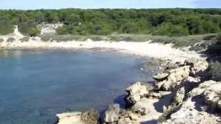 l'anse de Couronne-Vieille #3 @ la côte bleue