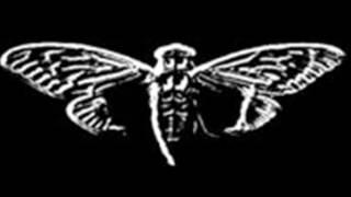 děsivá fakta:cicada 3301