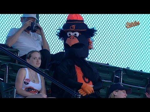 Fan enjoys game in Oriole Bird costume