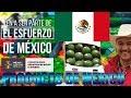 MÉXICO, Un Gran Productor de Alimentos a Nivel Mundial