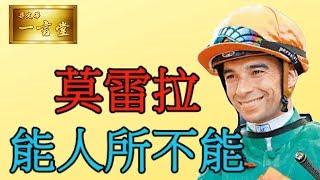 莫雷拉…能人所不能…2019-11-09 心水馬【梁定華一言堂】