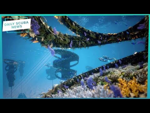 Daily Scuba News - What The... Is A Floating Reef?!