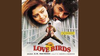 No Problem (Love Birds / Soundtrack Version)