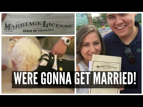 GETTING OUR MARRIAGE LICENSE AND MY DOG'S TUX!!!