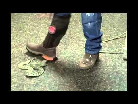 Bushnell Prohunter Footwear Snake Bite Testing Youtube