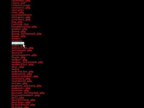 kader11000 algerian hacker