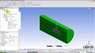 Видеоурок CADFEM VL1113 - Односторонний сопряженный FSI анализ в ANSYS Workbench