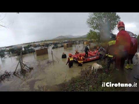 Vigili del Fuoco e Volontari eroi salvano circa 300 cani