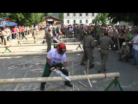 STIHL:Croatian kings chainsaws 1