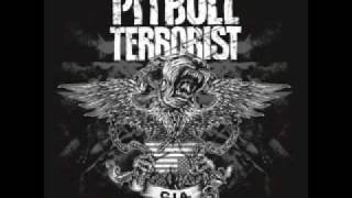 Watch Pitbull Terrorist The Silencer video