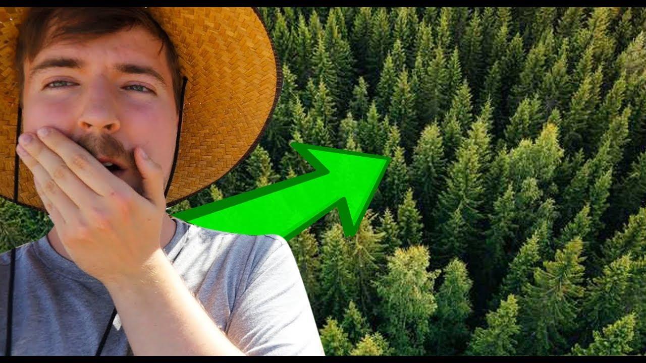 Mr Beasts plants 20'000'000 TREES - LWIAY #0078