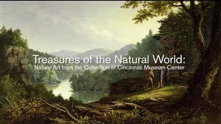 Treasures of the Natural World: Nature Art from the Collection of Cincinnati Museum Center